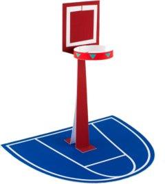 basketbal basket veld maken surprise