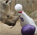 Bowlingbal surprise maken